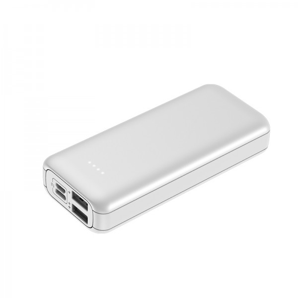 Power Bank Portable Charger 10000mAh External Battery Pack of 4 LED Lights with Dual   USB Ports and 2 Input Port,for iPhone,iPad,Mac,Samsung,Huawei and More